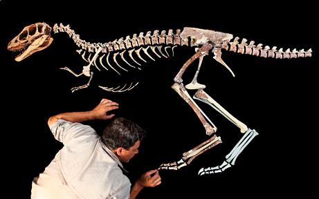 dinosaurussoorten
