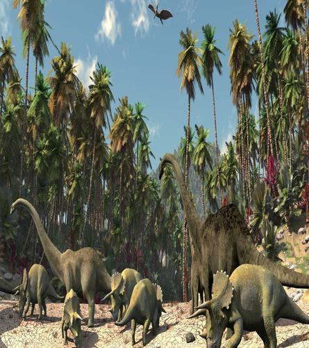 Dinosaurus Behang Wallpaper Dinosaurus Nl
