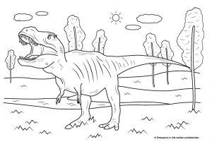 Kleurplaten Dinosaurus Rex.Dinosaurus Kleurplaat Tyrannosaurus Rex Dinosaurus Nl