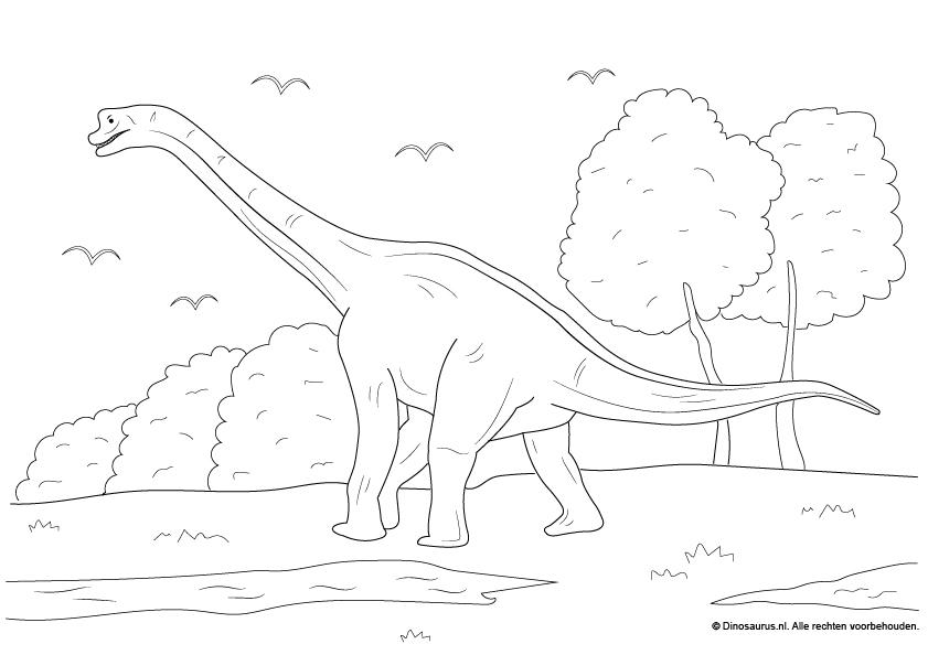 Kleurplaten Dinosaur.Dinosaurus Kleurplaten Dinosaurus Nl