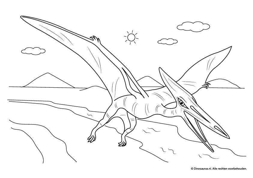 Kleurplaten Kleine Dieren.Dinosaurus Kleurplaten Dinosaurus Nl